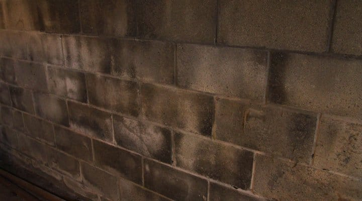 Calcium deposits on basement wall.