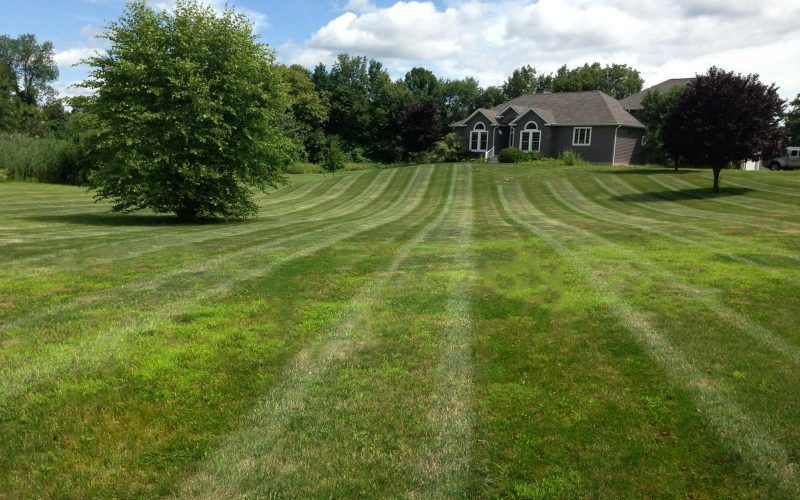 A green lawn in Highland, NY.