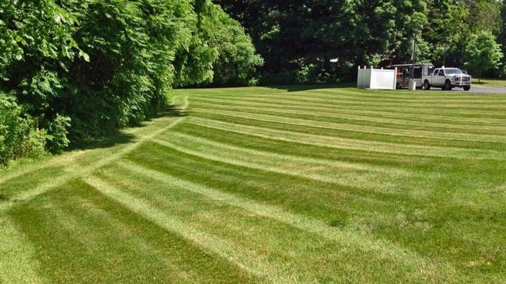 Tips for Caring for a New Lawn