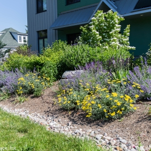 A drought-tolerant entryway planting in New Paltz, NY, designed and installed by Masseo Landscape, Inc.