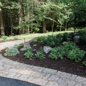 A curving paver front walkway with a planting space featuring native plants and natural stone accents designed by Masseo Landscape, Inc. - Stone Ridge Landscaper