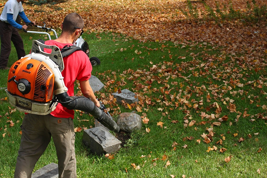 Leaf blower being used for fall cleanup.