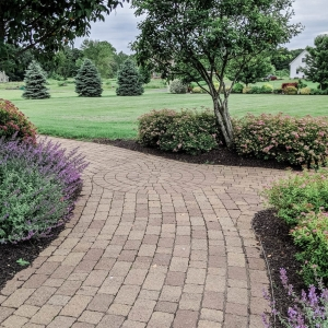 Brick-like precast concrete paver walkway with circular inlay detail at intersection surrounded by native plantings in a front entryway in Ulster County, NY - Masseo Landscape, Inc.