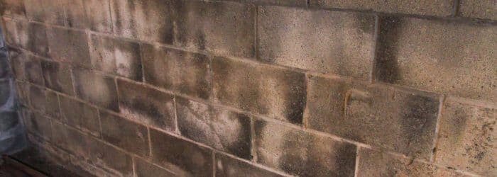 Cinderblock basement wall with white chalky substance (lime)>