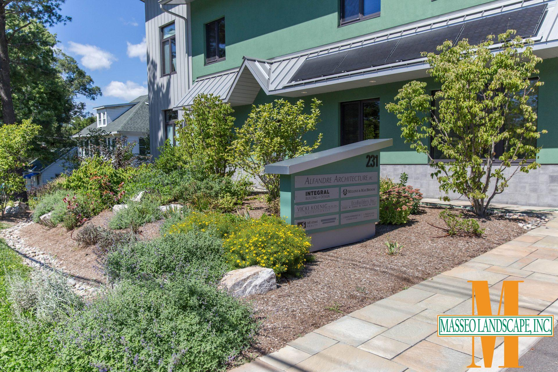 A drought-tolerant planting installation on a business front in New Paltz, NY.