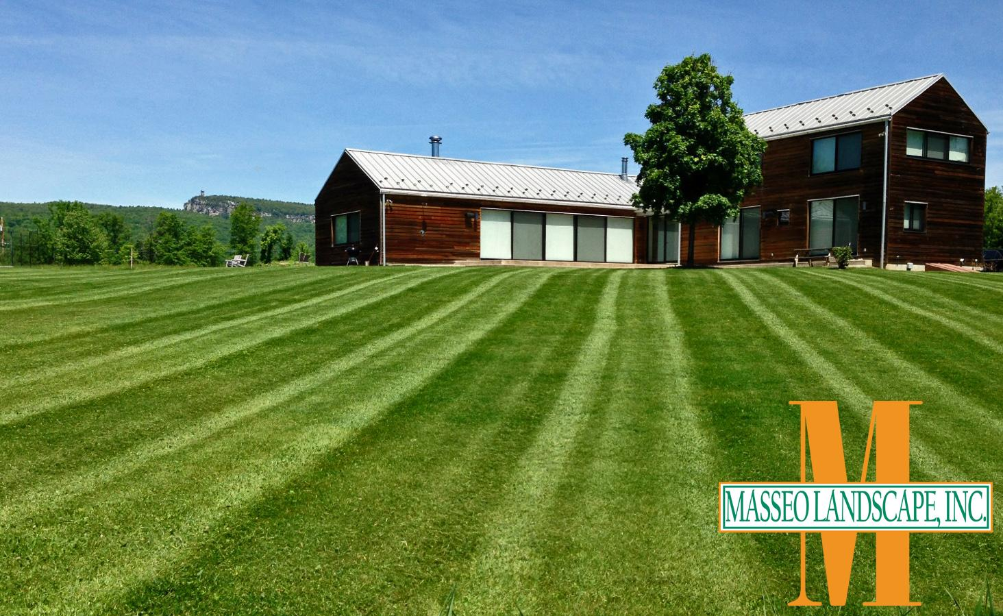 A recently mowed lawn in New Paltz, NY.