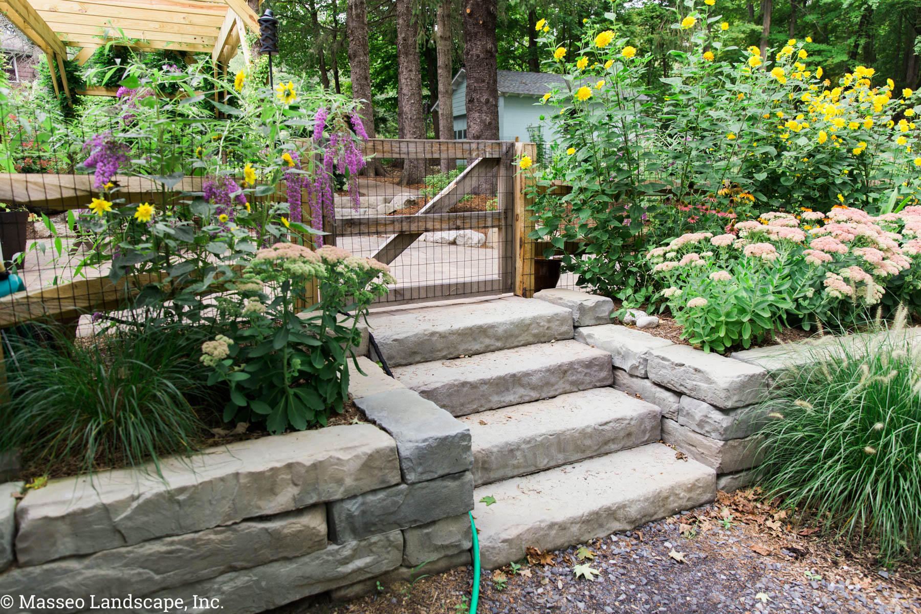 Rosetta Kodah retaining walls and steps in an entryway in New Paltz, NY by Masseo Landscape, Inc.