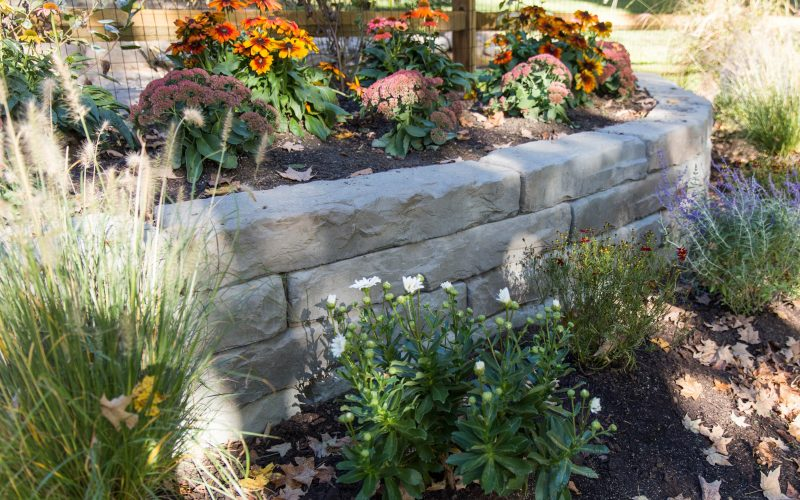 A colorful fall planting installation around a Rosetta Kodah wall.
